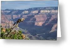 visit to Grand Canyon  Greeting Card