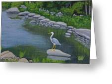 Visiting Heron Greeting Card