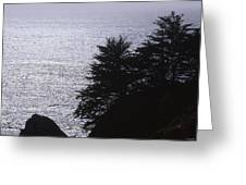 Vista - Julia Pfeiffer Burns State Park Greeting Card