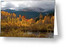 Vivid Autumn Aspen And Mountain Landscape Greeting Card by Cascade Colors