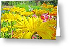 Vivid Colorful Yellow Daisy Flowers Daisies Baslee Troutman Greeting Card