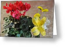 Vivid Colors Greeting Card