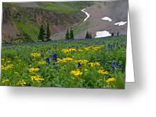 Vivid Colors Of The Colorado Alpine Greeting Card