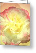 Voice Of The Heart A Rose Portrait Greeting Card