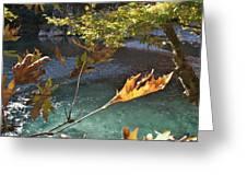 Voidomatis River Greeting Card