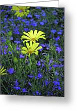 Voltage Yellow And Electric Blue 06 Greeting Card