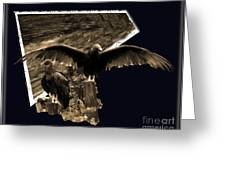Vulture 3d Greeting Card