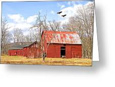 Vultures Over Barn Greeting Card