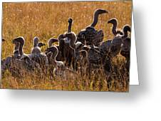 Vultures Greeting Card