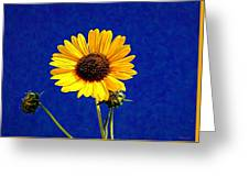 Wabi-sabi Sunflower Greeting Card