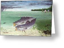 Wade Fishing For Speckled Trout Greeting Card