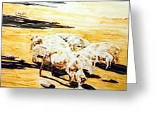 Wade's Sheep Greeting Card