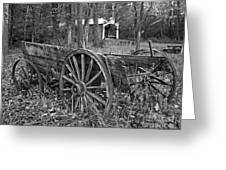 Wagon In The Woods Greeting Card