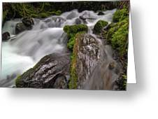 Wahkeena Creek Greeting Card
