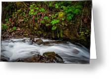 Wahkenna Creek Greeting Card