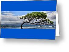 Waiehu Panarama Greeting Card