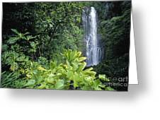 Wailua Falls Greeting Card
