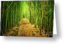 Waimoku Bamboo Forest Greeting Card