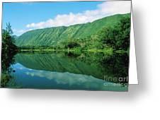 Waipio Valley Stream Greeting Card