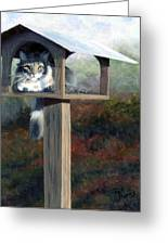 Waiting For Dinner Greeting Card by Pat Burns