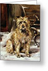 Waiting For Master   Greeting Card by Jane Bennett Constable