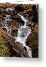 Walden Creek Cascade Greeting Card