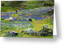 Walk Among The Bluebells Greeting Card
