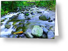 Walk Bridge Over Moffit Creek Greeting Card