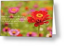 Walk In Love Greeting Card