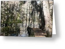 Walk In Nature Greeting Card