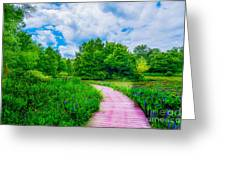 Walk Into Beauty Shaw's Nature Reserve Wet Lands Greeting Card