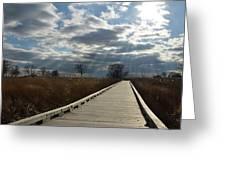 Walk Thru The Marsh Greeting Card