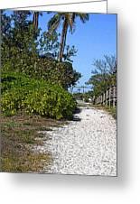 Walk To The Beach Greeting Card