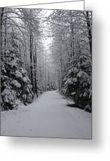 Walk With Frost Greeting Card