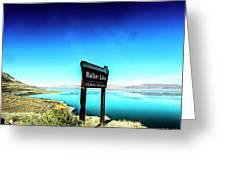 Walker Lake Greeting Card