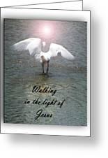 Walking In The Light Of Jesus Greeting Card