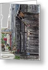 Walking Old Town Greeting Card