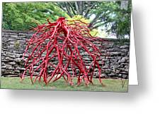 Walking Roots Sculpture 2 Greeting Card