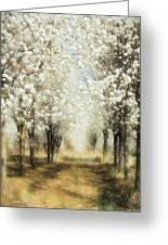 Walking Through A Dream Ap Greeting Card