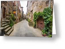 Walking Through Old Europe Greeting Card