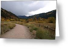 Walking Trail In Colorado Greeting Card