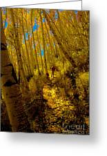 Walking With Autumn Greeting Card