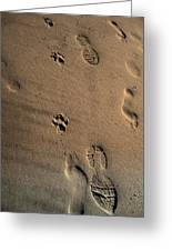 Walking With My Dog Greeting Card