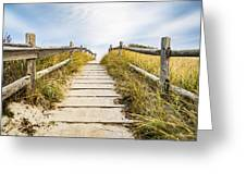 Walkpath To The Beach Greeting Card