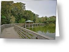 Walkway At Lake Dora Greeting Card