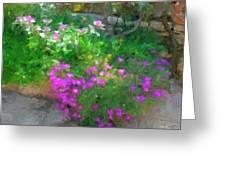 Wall Flowers, Croatia Greeting Card