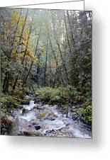 Wallace River Greeting Card