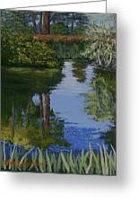 Waller Park Pond Greeting Card by Ron Smothers