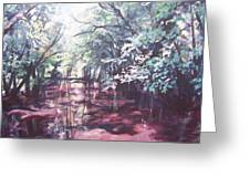 Wall's Bridge Reflections Greeting Card