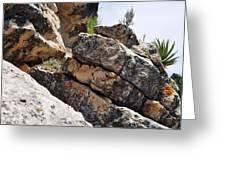 Walnut Canyon Cliffs Greeting Card